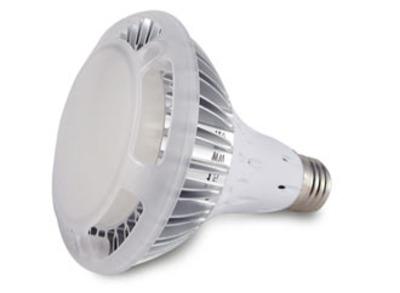 PAR30 LEDランプ 【10W】 口金E26